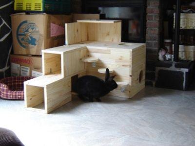 Comment faire une cabane a lapin