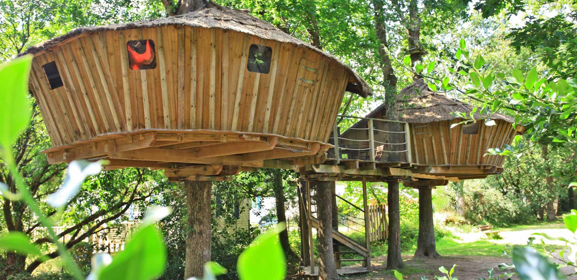 Cabane arbre dormir