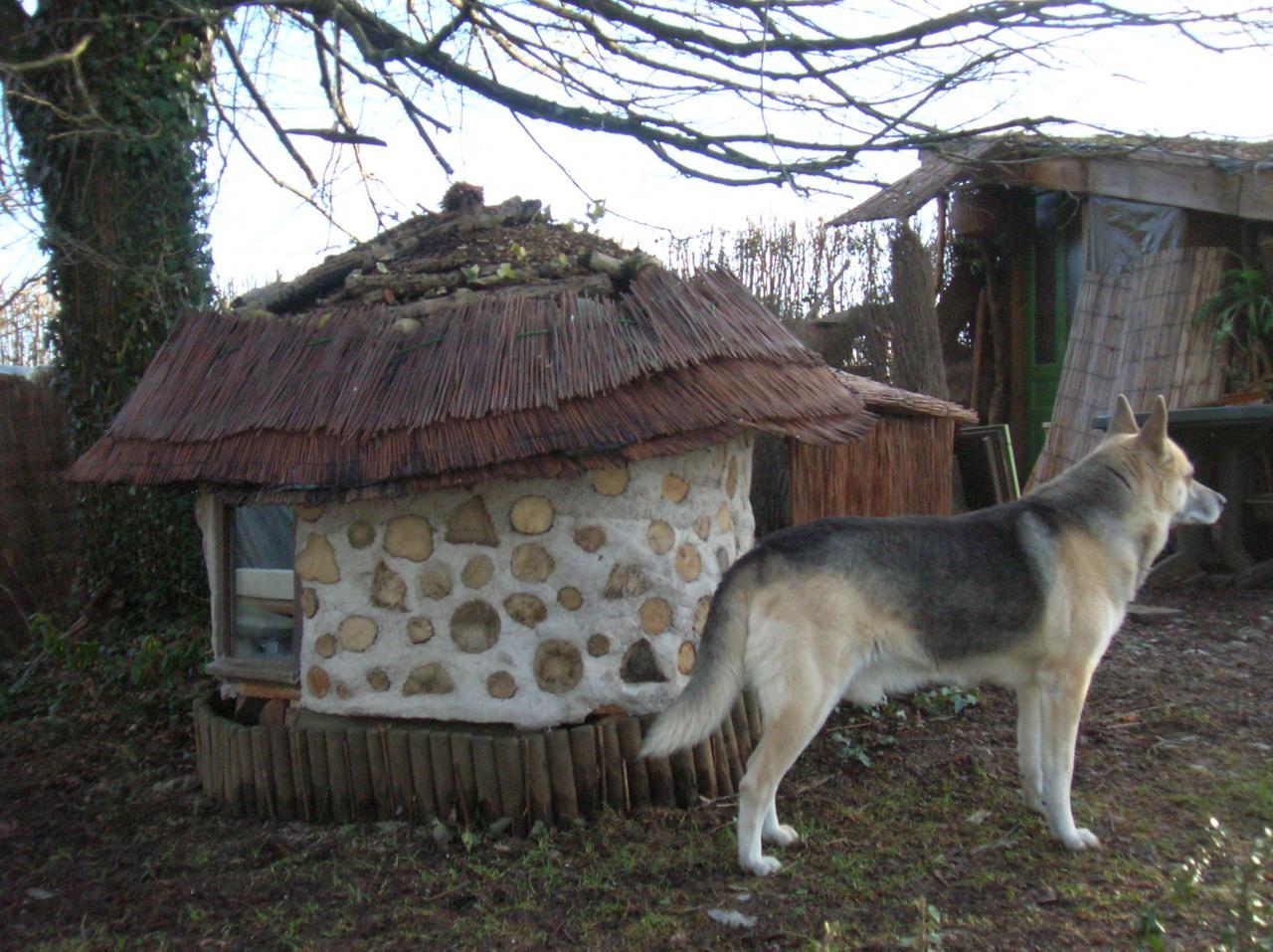 Réchauffer une cabane a chat