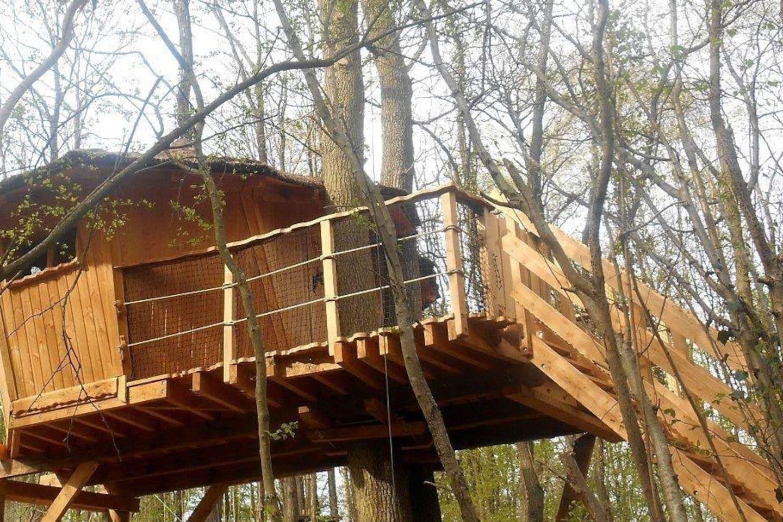 Cabane dans les arbres wallonie