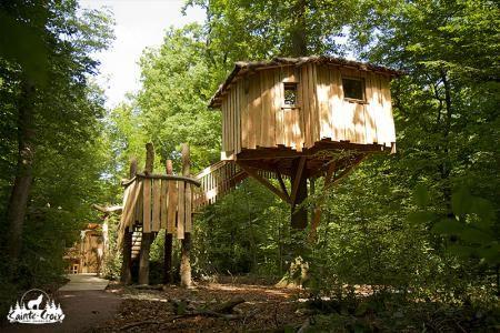 Cabane dans les arbres lorraine