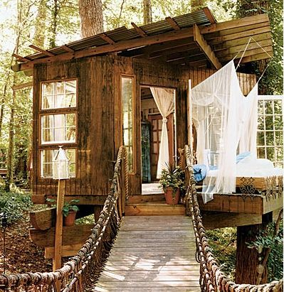Cabane dans les bois hossegor