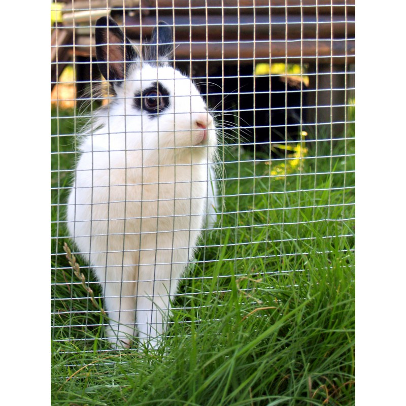 Cage a lapin grillage