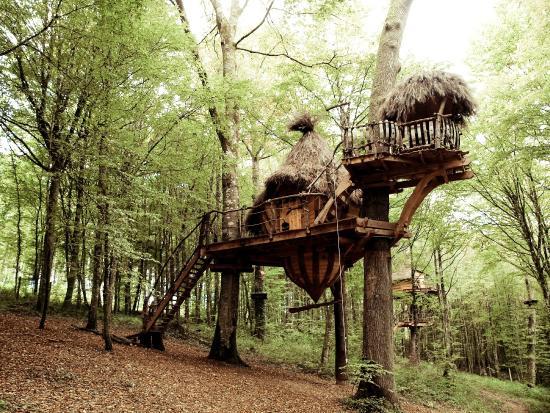 Cabane dans les arbres haute marne
