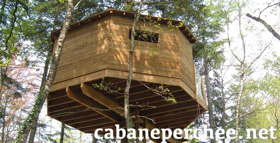 Cabane arbre a construire