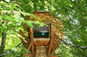 Cabane arbre oise