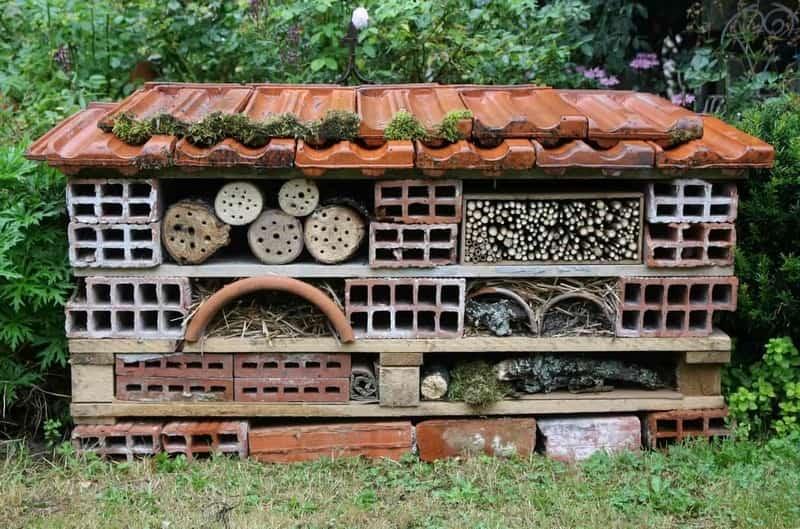 Tuto cabane a insectes