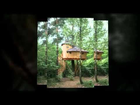 Cabane dans les arbres quistinic