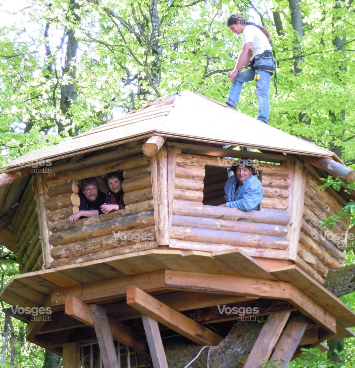 Cabane arbre haut rhin