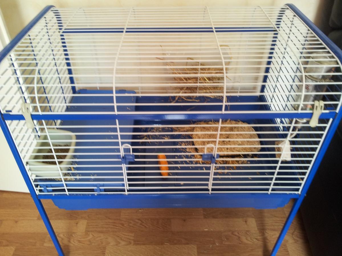Cage a lapin avec roulette