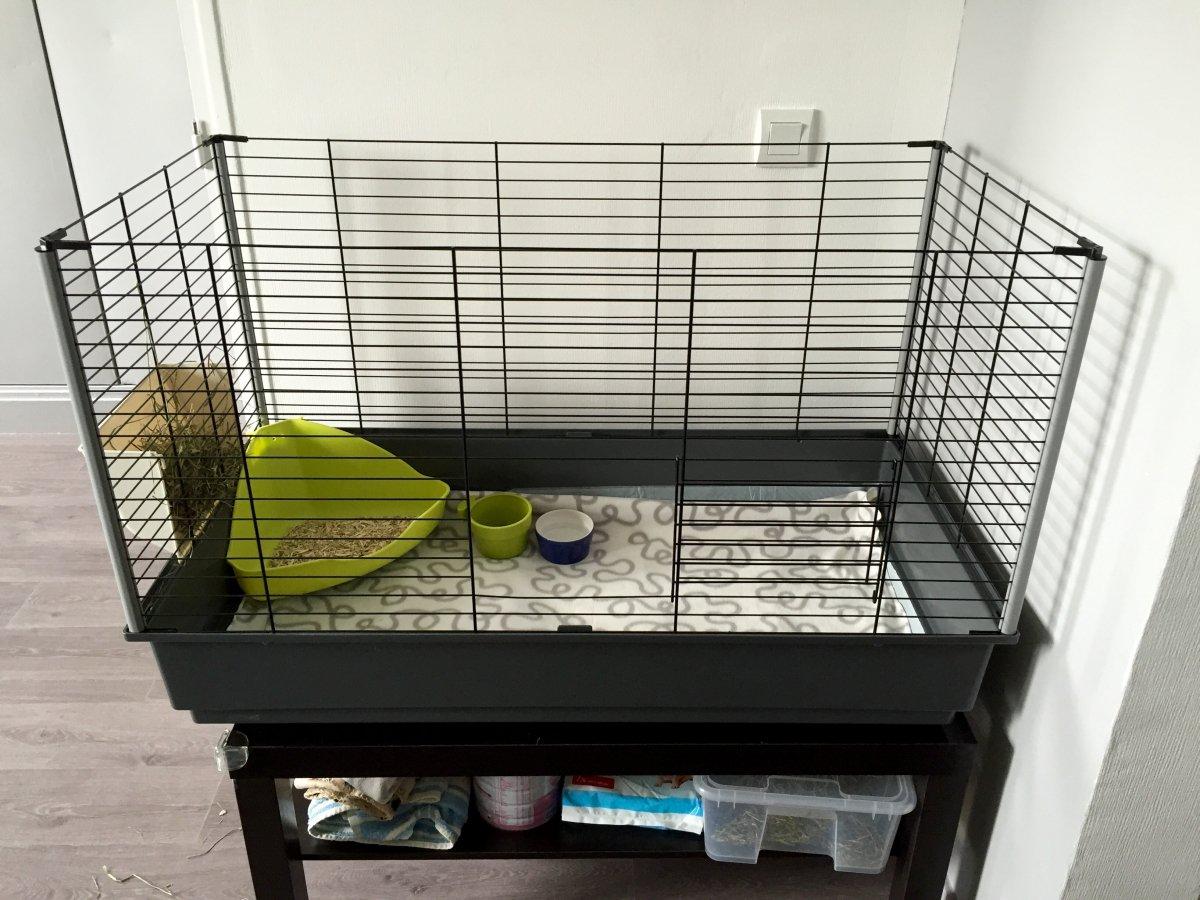 Cage a lapin belgique