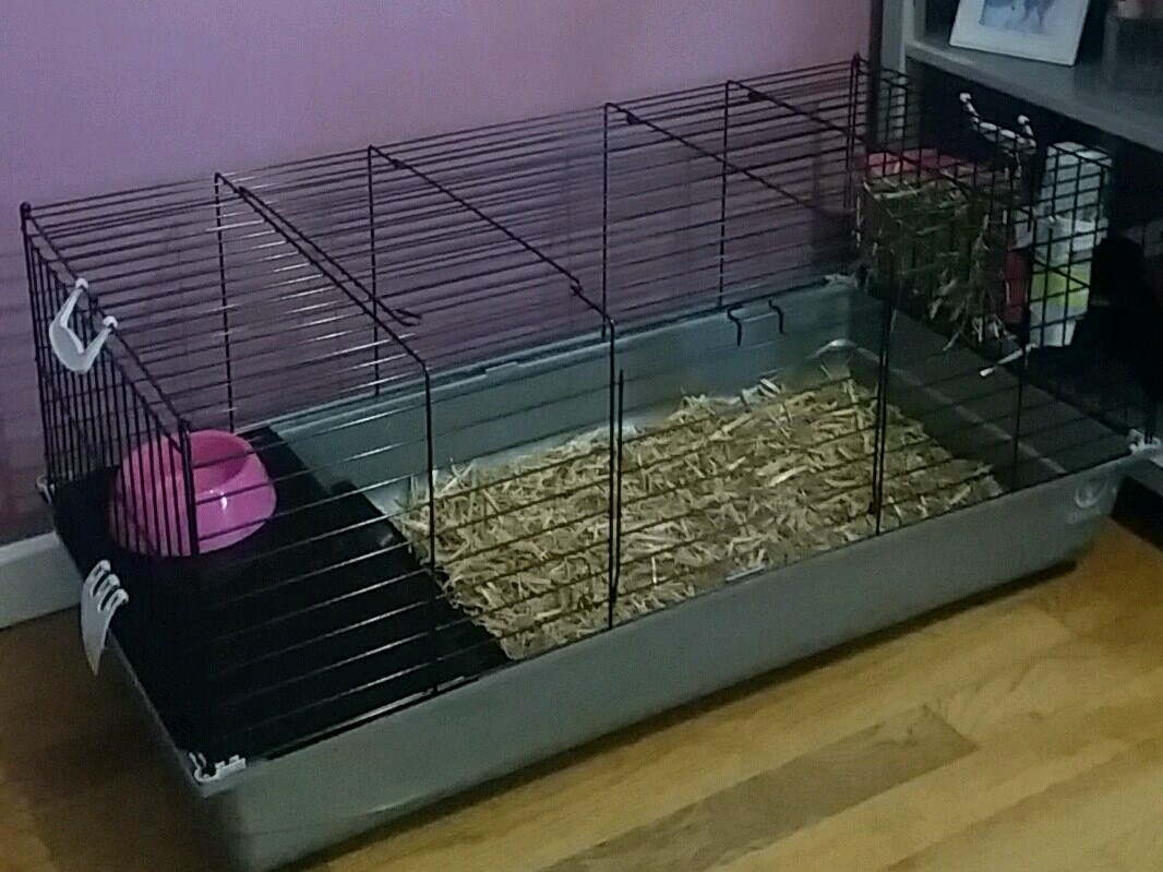 Cage a lapin luxe