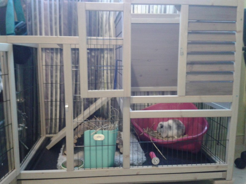 Cage a lapin zoomalia