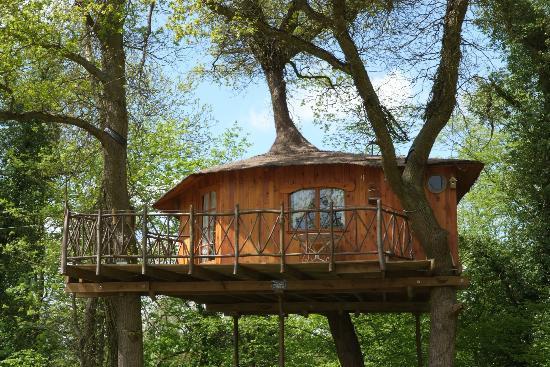 Cabane dans les bois en picardie