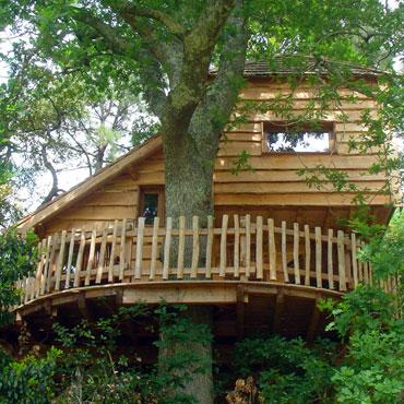 Cabane arbre quercy