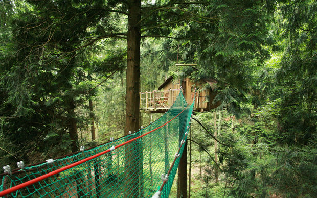 Cabane dans les arbres tyrolienne