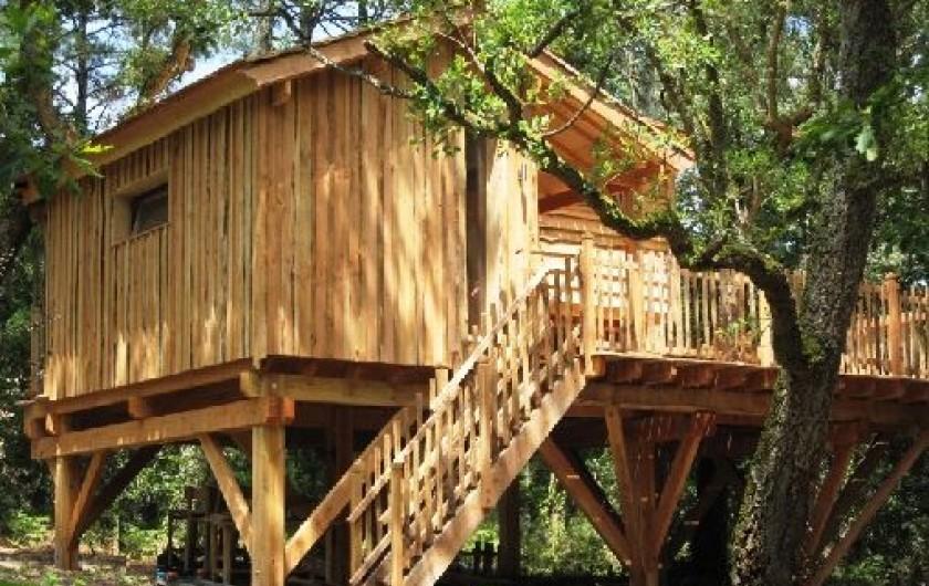 Cabane arbre naturiste