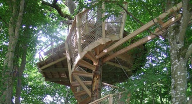 Cabane perchée nid de cassandre