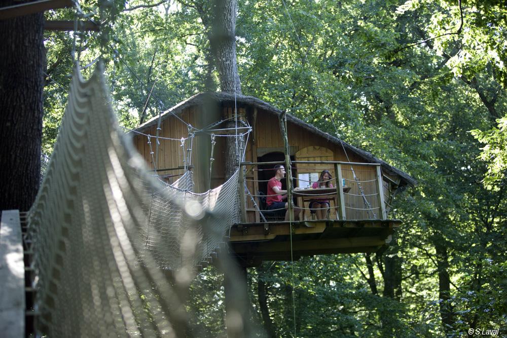 Cabane dans les arbres reunion