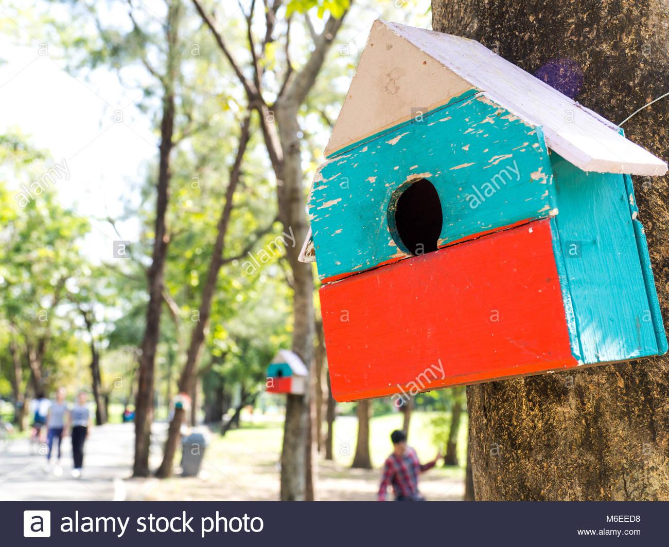 Cabane a oiseaux colorés