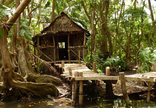 Cabane en bois herault
