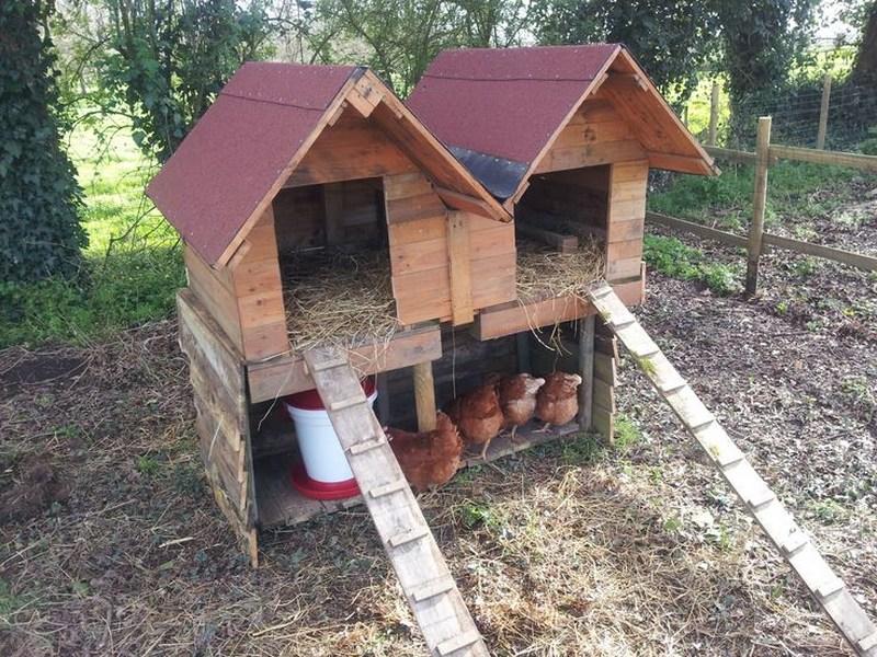 Faire une cabane a poule en palette