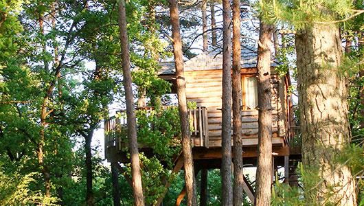 Cabane arbre smartbox