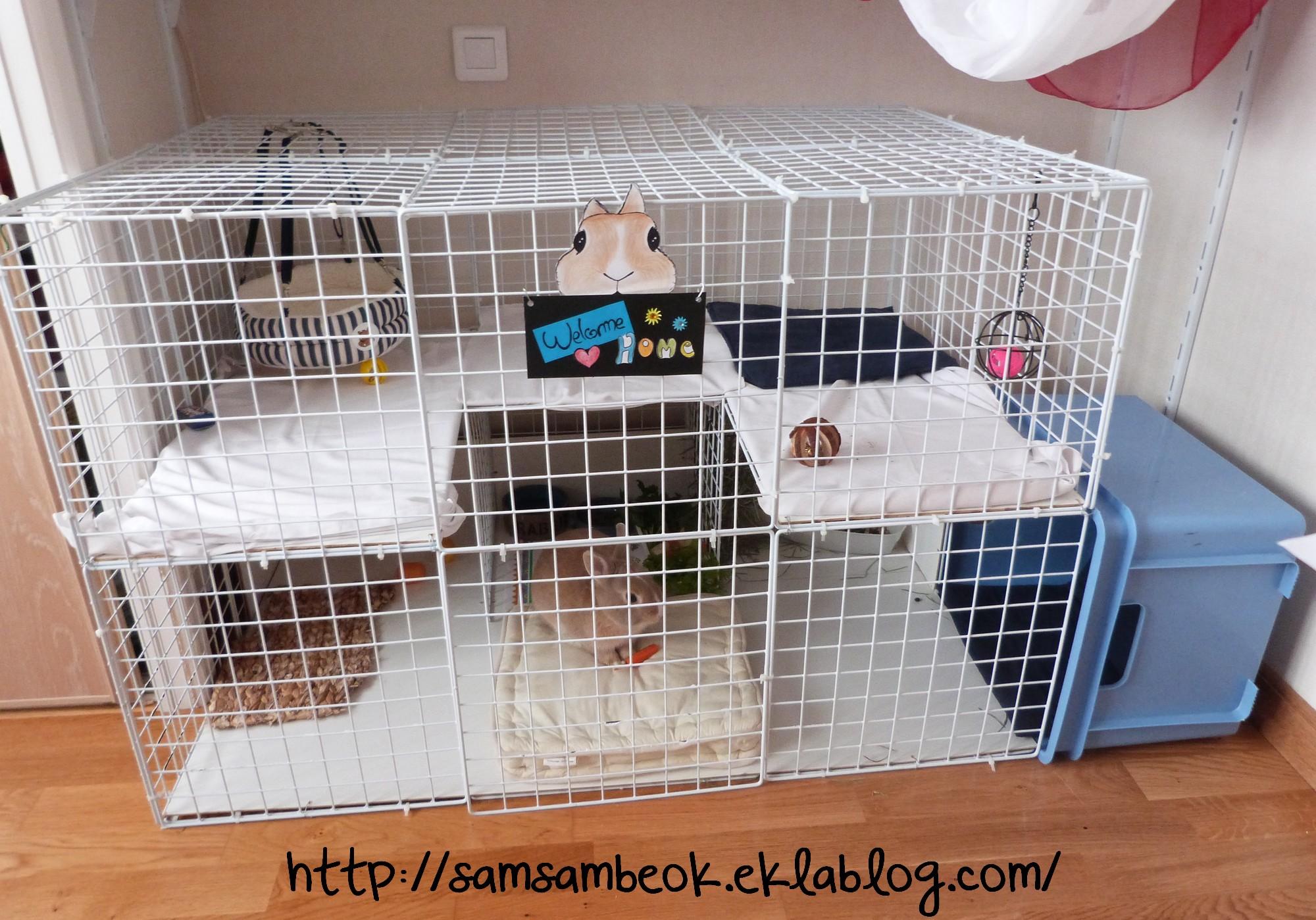 Cage a lapin occasion le bon coin