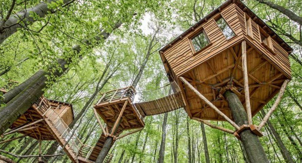 La cabane dans les arbres ile de france