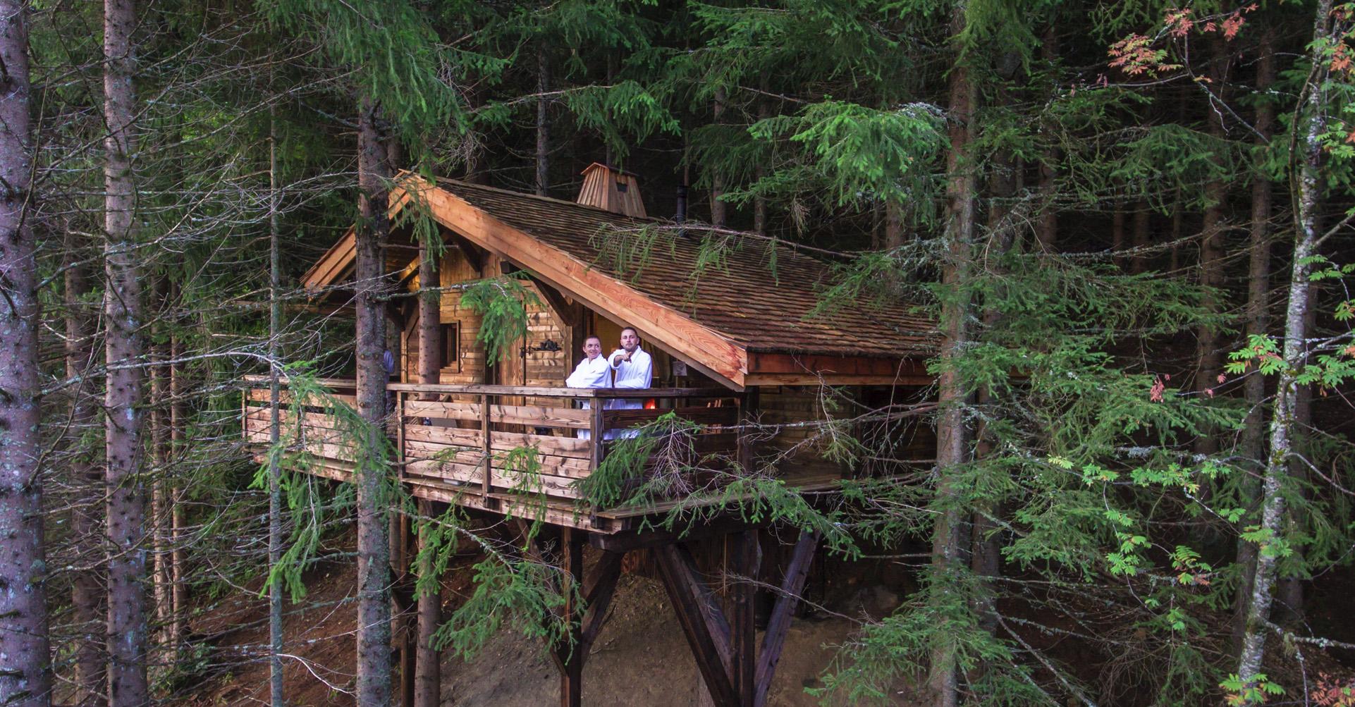 Cabane arbre nice
