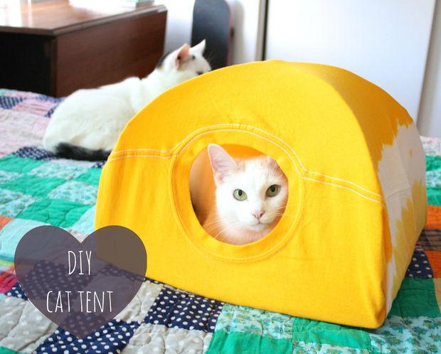 Cabane pour chat facile