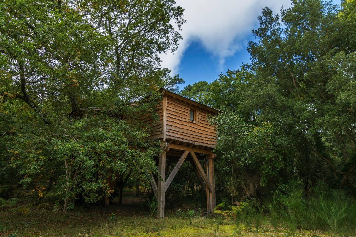 Cabane dans les arbres hossegor