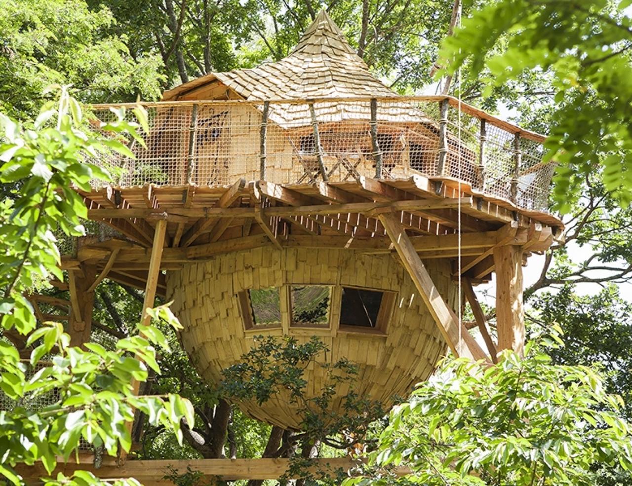Cabane dans les arbres dans le var