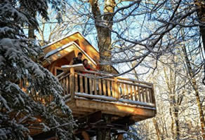 Cabane perchée dans les arbres quebec