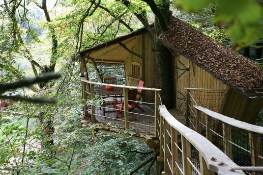 Cabane arbre groix