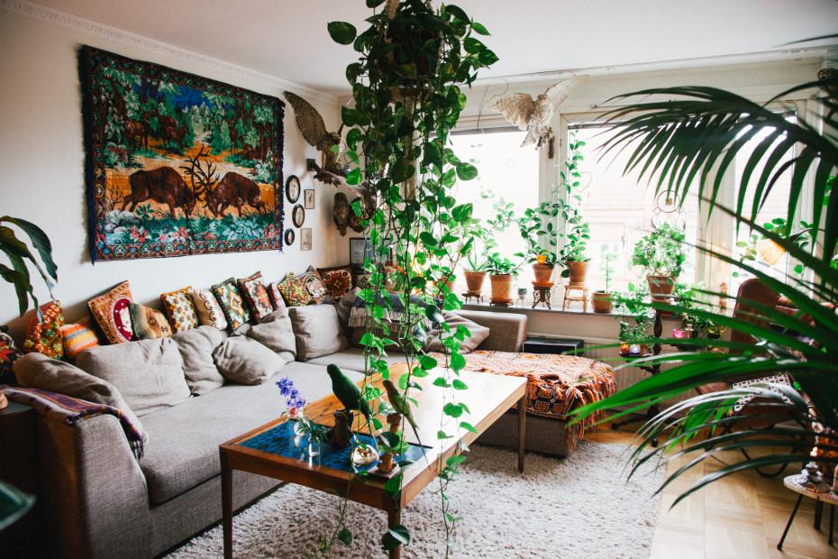 Salon de jardin en interieur