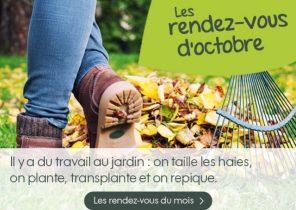 Salon de jardin Archives - Page 72 sur 170 - Mailleraye.fr jardin