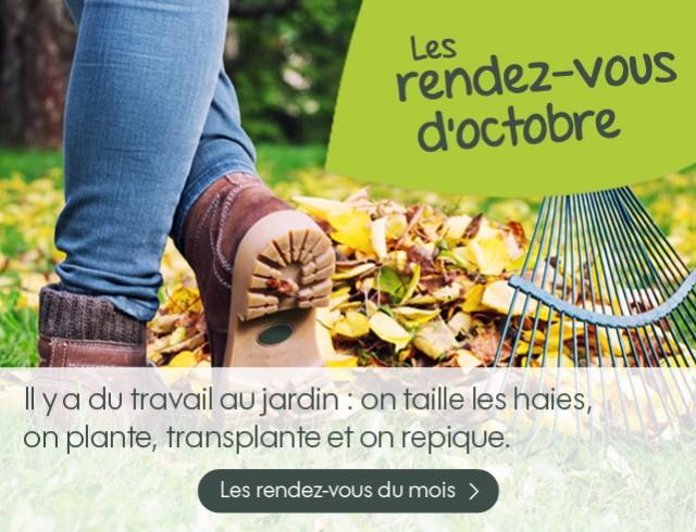 Magasin vert morlaix salon de jardin - Mailleraye.fr jardin