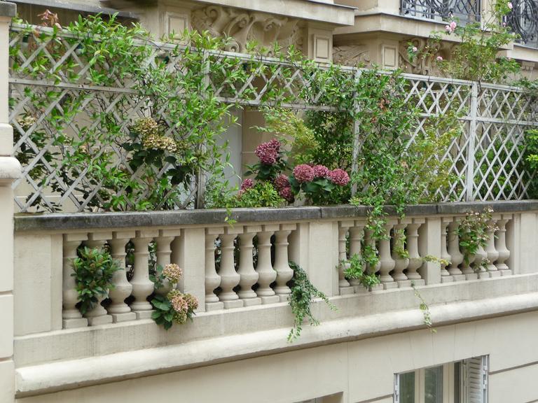 Terrasse fleurie paris