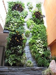 Terrasse végétalisée en anglais