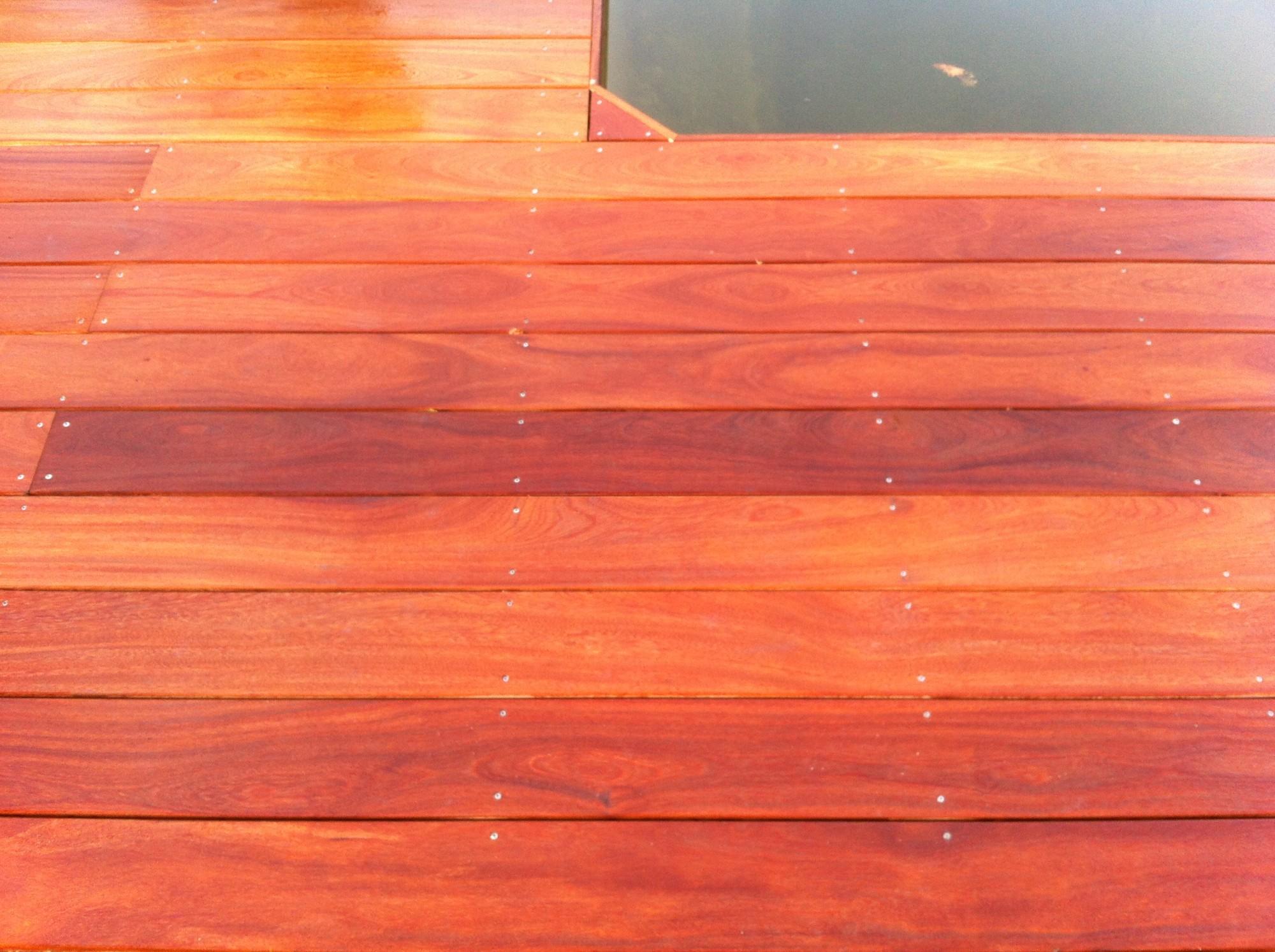Vis inox pour terrasse bois exotique
