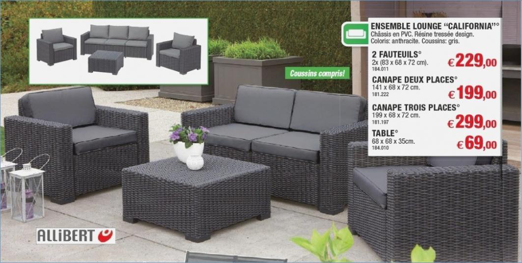 Salon de jardin lounge set