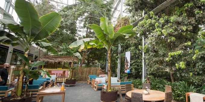 Café terrasse wolhusen