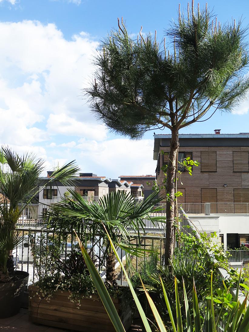 Terrasse et jardin bordeaux - Mailleraye.fr jardin