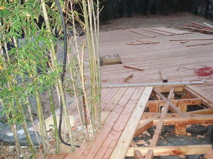 Piscine naturelle terrasse bois
