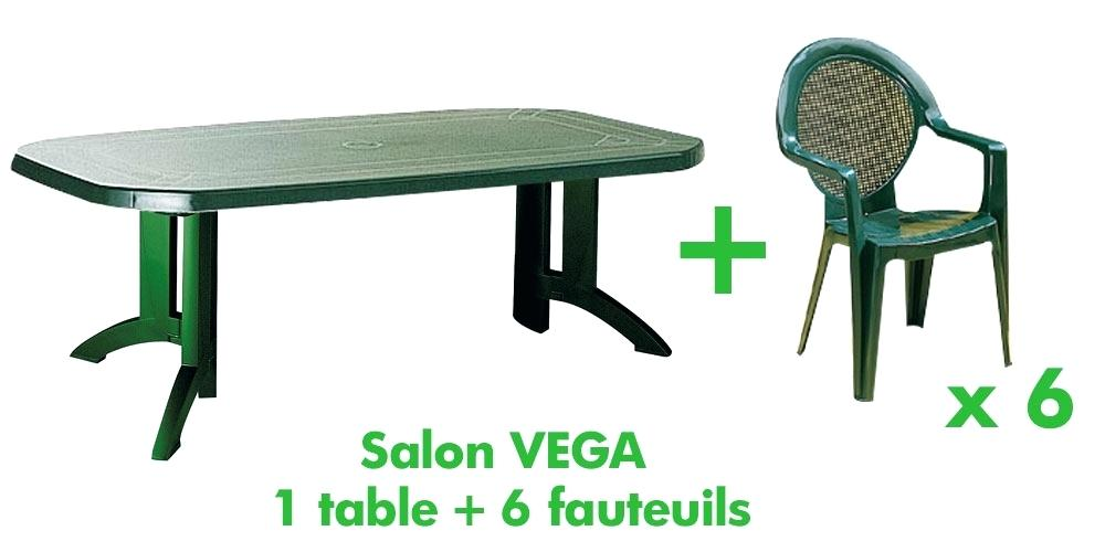 Beautiful Salon De Jardin Vert Plastique Ideas - House Design ...