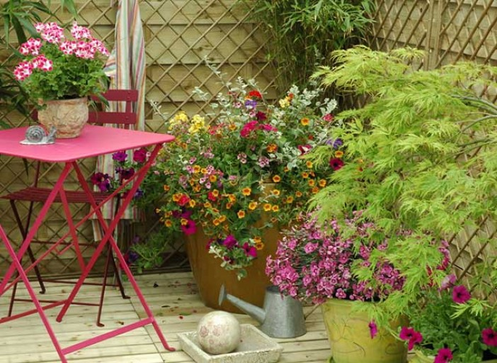 Terrasse jardin en pot